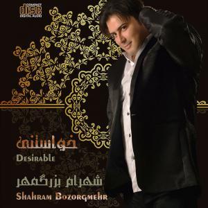 Shahram Bozorgmehr Ye Donya Midooneh
