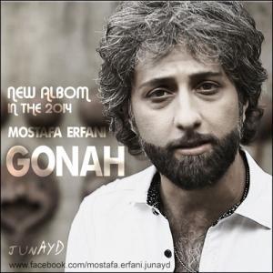 Mostafa Erfani Divooneh