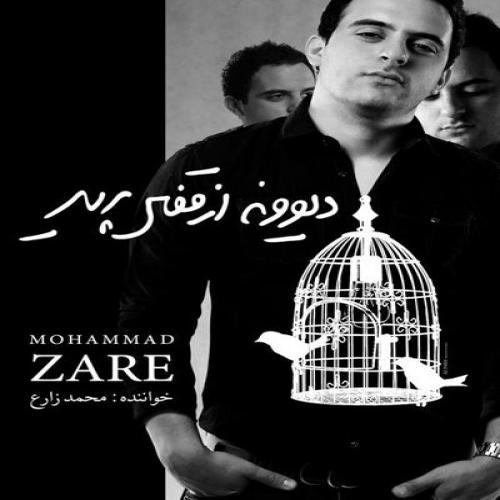 دانلود آهنگ محمد زارع دیوونه از قفس پرید
