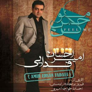 Amir Ehsan Fadaei Faseleh
