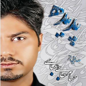 Hesam Haji Abbasi Etefaghi