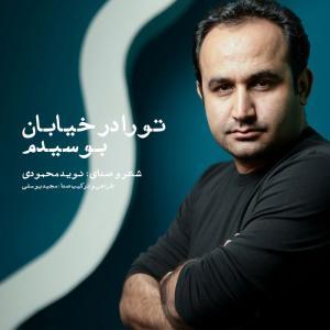 Navid Mahmoodi Cafe