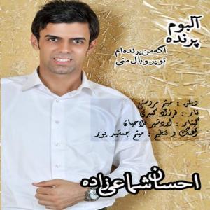 Ehsan Shamaeezadeh Sepahan