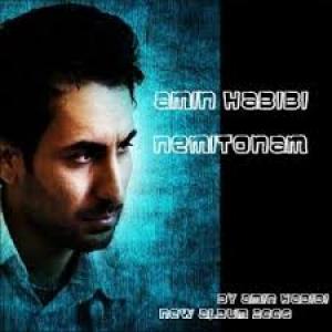 Amin Habibi Nemitonam