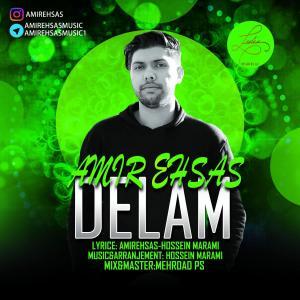 Amir Ehsas – Delam