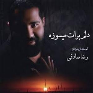 Reza Sadeghi Delam Barat Misooze
