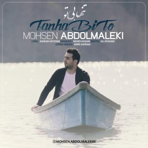 Mohsen Abdolmaleki Tanha Bi To