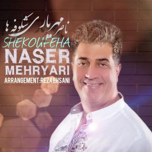 Naser Mehryari Shekoufeha