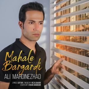 Ali Mahdinezhad Mahale Bargardi