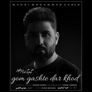 Mehdi Mohammad Zadeh Gom Gashte Dar Khod