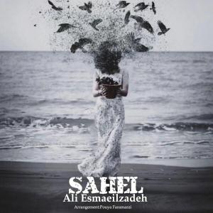 Ali Esmaeilzadeh Sahel