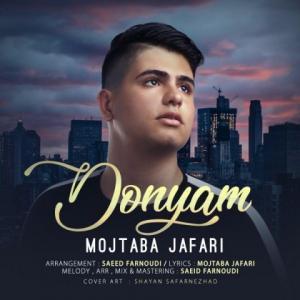 Mojtaba Jafari Donyam