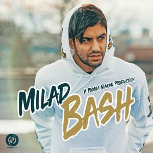 Milad J Bash