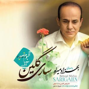 Behzad Mirloo Reyhan