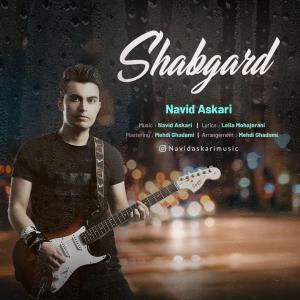 Navid Askari Shabgard