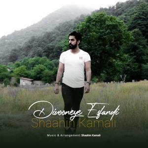 Shaahin Kamali Divooneye Esfandi