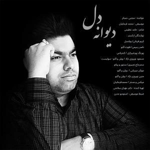 Mojtaba Hesam Divaneh Del