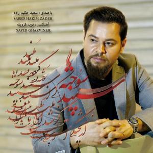 Saeed Hakimzadeh Dast Afshan