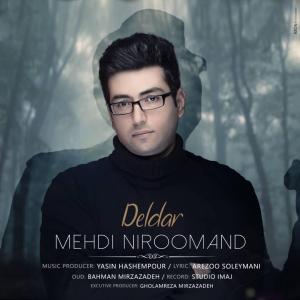 Mehdi Niroomand Deldar