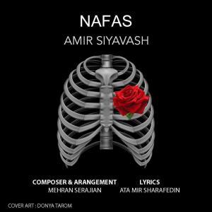 Amir Siyavash Nafas