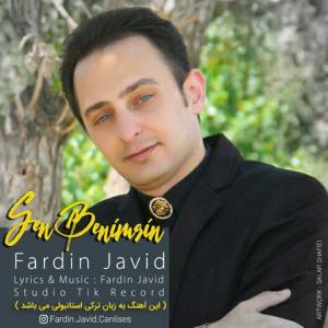 Fardin Javid Sen Benimsin