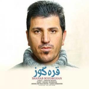Shahab Bozorgan Gara Gooz