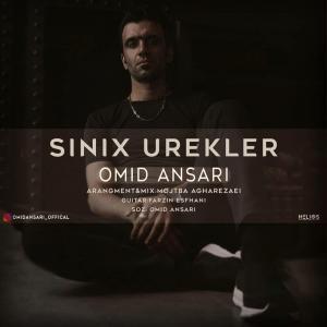 Omid Ansari Sinix Urekler