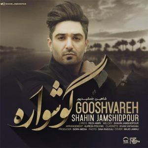 Shahin Jamshidpour Goshvareh