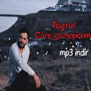 Togrul Chara Gozlyiram