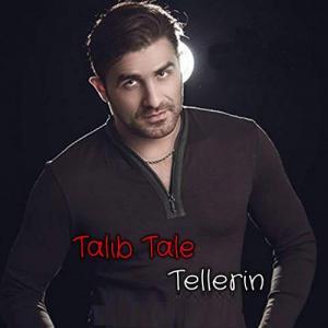 Taleb Talea Tellarin