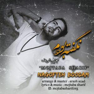 Mojtaba Sharif Nagofteh Boodam