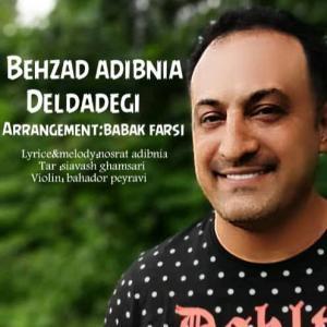 Behzad Adib Nia Deldadegi