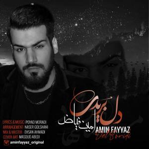 Amin Fayyaz Del Boridi