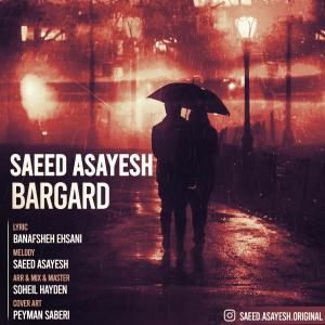 Saeed Asayesh Bargard