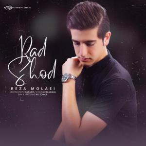 Reza Molaei Rad Shod