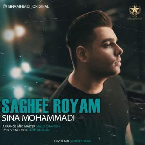 Sina Mohammadi Saghfe Royam