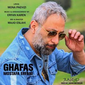 Mostafa Erfani Ghafas