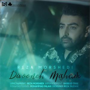 Reza Morshedi Divooneh Misham