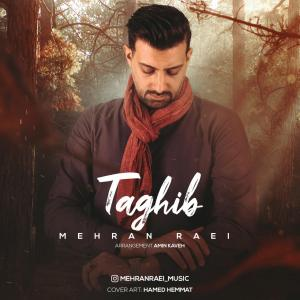 Mehran Raei Taghib