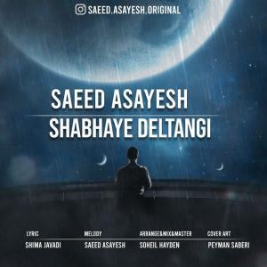 Saeed Asayesh Shabhaye Deltangi