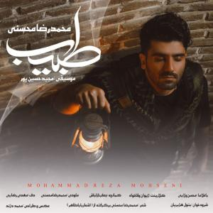 Mohammadreza Mohseni Tabib
