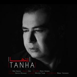 Amin Sadeghi Tanha