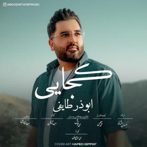 Aboozar Tayefi Kojaei