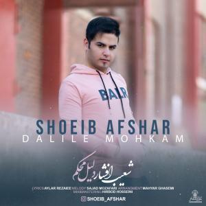 Shoeib Afshar Dalile Mohkam