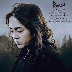 Amin Bani Darigh