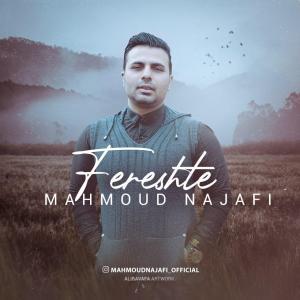 Mahmoud Najafi Fereshte