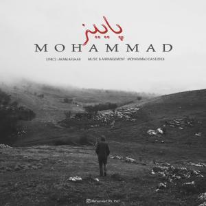 Mohammad Paeez