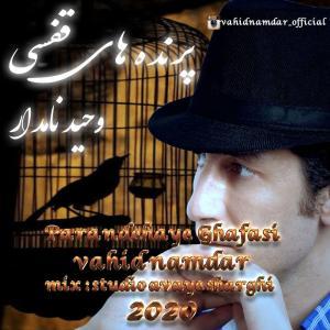 Vahid Namdar Parandehaye Ghafasi