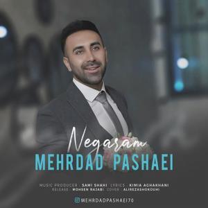 Mehrdad Pashaei Negaram