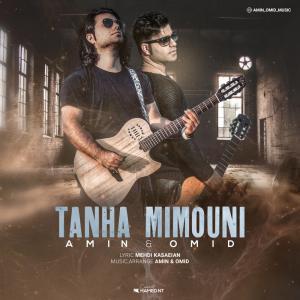 Amin And Omid Tanha Mimouni